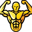 Stock Vector: Bodybuilder