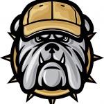 Bulldog head and baseball cap — Stock Vector