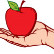 Apple in the hand — Stock Vector