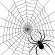 Stock Vector: Black spider and spider web
