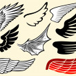 Wings collection (set of wings) — Stock Vector #27256505