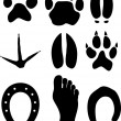 Paw prints — Stock Vector #27257177