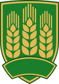 Wheat emblem (design) — Stock Vector