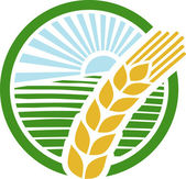 Wheat sign - badge (design) — Vector de stock
