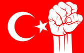 Turkey fist (flag of turkey) — Stock Vector