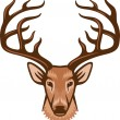 Deer head — Stock Vector #29545795