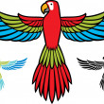 Parrot flying — Stock Vector #29545863