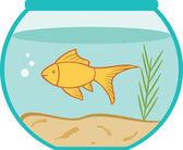 Aquarium mit einem kleinen Goldfisch — Stockvektor