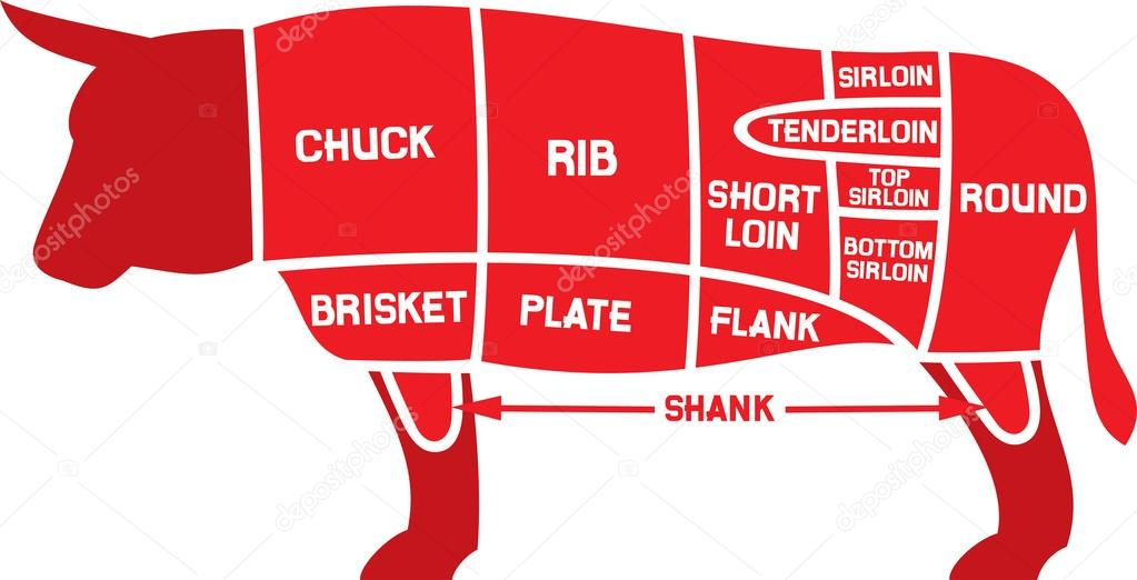Cow Meat Chart Dinocrofo