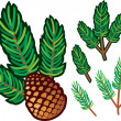 Branch of pine and pine cone — Imagen vectorial