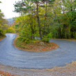 Road in autumn forest — Stock Photo #12605469