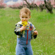 Baby boy with dandelions — Stock Photo