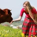Beautiful girl with long hair feeding cow on meadow — Stock Photo #12608876