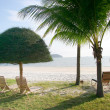 Tropical resort — Stock Photo #12608922