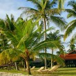 Sand beach on resort in tropics — Zdjęcie stockowe #12608930