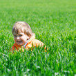 Happy boy in green grass — Stock Photo