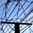 Barbed wire on sky background - Stock Photo