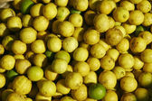 Plentry of yellow limes — Stock Photo