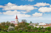 Small town view in western ukraine — Stock Photo