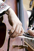 Close up of playing contrabass — Stock Photo