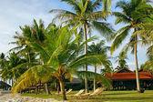 Piasek plaży ośrodek w tropikach — Zdjęcie stockowe