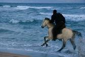 Silhueta de cavaleiro no fundo do mar de tempestade — Foto Stock