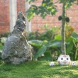 Three toy pigs in small yard — Stock Photo #12611104