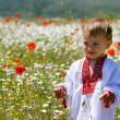 Young boy in traditional clothes - Foto de Stock