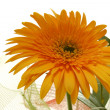 Close up of yellow flower in a bouquet — Stock Photo
