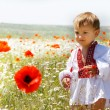 Young boy in traditional clothes on natural background - Stock Photo