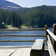 Wooden bench on lake shore — Stock Photo #12612289