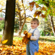 Young boy with autumn leaves in hands — Stock Photo