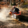 Quad racer in action - Stock Photo