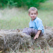Cute boy playing in hay — Stock Photo #12614353