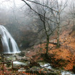 Waterfall in foggy autumn forest - Stock Photo