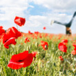 Jumping girl in poppy field — Stock Photo