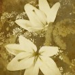 Old-styled flowers background - Stock Photo