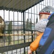 Baby boy with father in zoo — Stock Photo