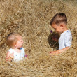 Stock Photo: Two kids playing in hay