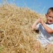 Cute young boy in haystack - Stock Photo