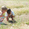 Stock Photo: Two kids catching grasshoppers in grass