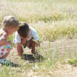 Two kids catching grasshoppers in grass — Stock Photo
