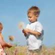 Two kids playing with big dandelions — Stock Photo #12616398
