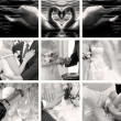 Wedding photos collection — Stock Photo