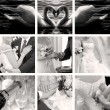 Wedding photos collection — Stock Photo #12618665