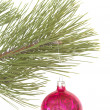 Stock Photo: Christmas tree and ball