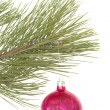 Christmas tree and ball — Stock Photo #12618880
