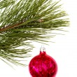 Christmas tree and ball — Stock Photo #12618881