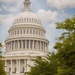 我们在华盛顿国会大厦 — 图库照片