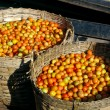 Tomatoes in cane baskets - Stock Photo